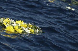 fiori-in-mare