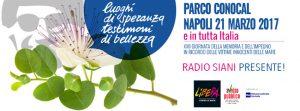 Radio Siani 2017 Ponticelli
