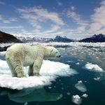 Cambiamenti climatici: Non abbiamo più tempo